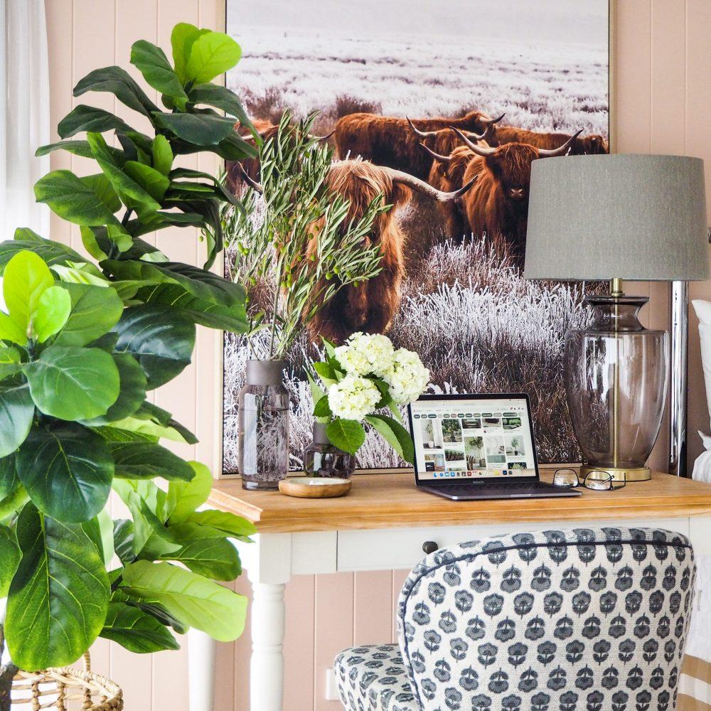 Bedroom Office Decorating Ideas - plants