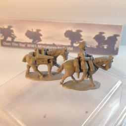 T.L. 2 x Indian Cavalry riders on horses + horse loaded with MMG