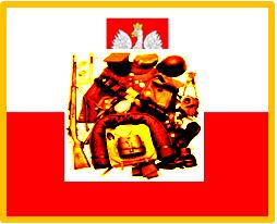 Polish Army Accessories