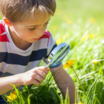 child looking at a flower through a magnifying glass