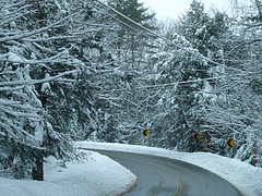 road in winter flanked by snowy evergreen trees