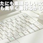 """""""MSR""""(メインサイトリライター)  株式会社T.P.L.Consulting 田嶋秀一の評判"""