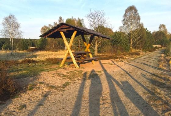 Mammutmarschtraining 7 Schönower Heide