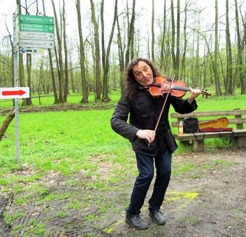 Spreewaldmarathon 2016 Lübbenau Geigenspieler