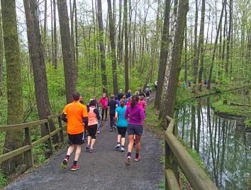 Spreewaldmarathon 2016 Lübbenau Strecke