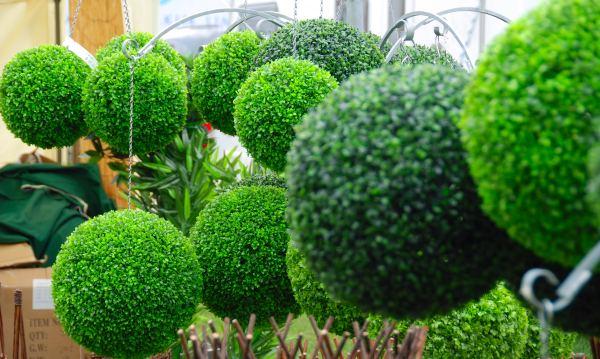 5 eco friendly gardening ideas