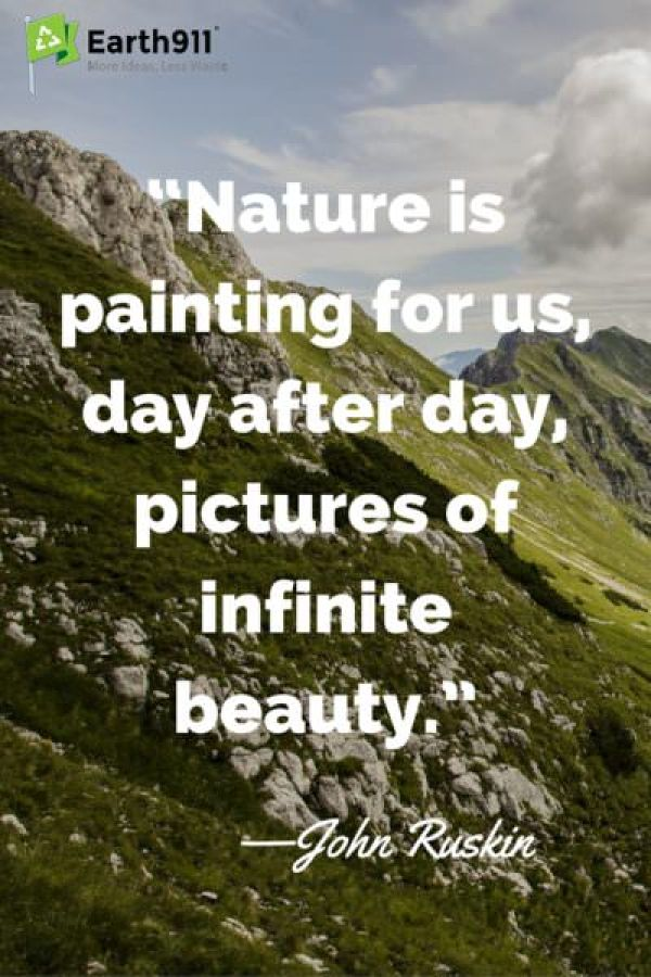 Love this quote about the beauty of the world around us.