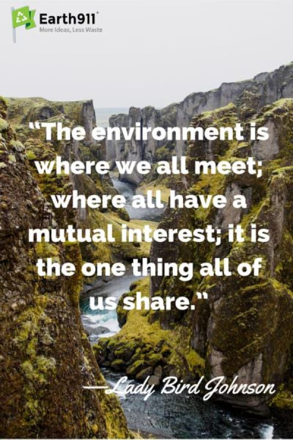Awesome quote about the environment