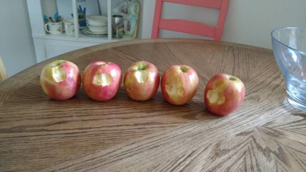 nibbled apples