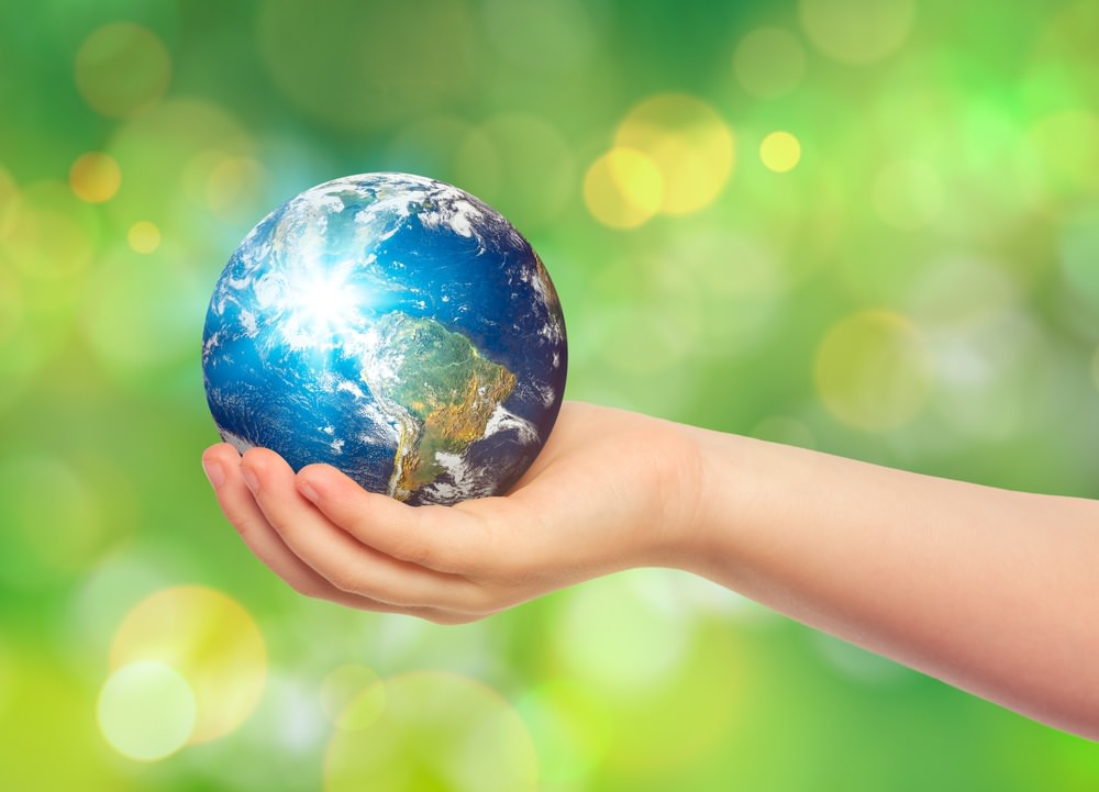 How to Keep the Earth Day Momentum Going  Earth911com