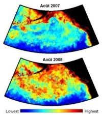 imagery of plankton bloom in NE Pacific before and after eruption of Kasatochi volcano