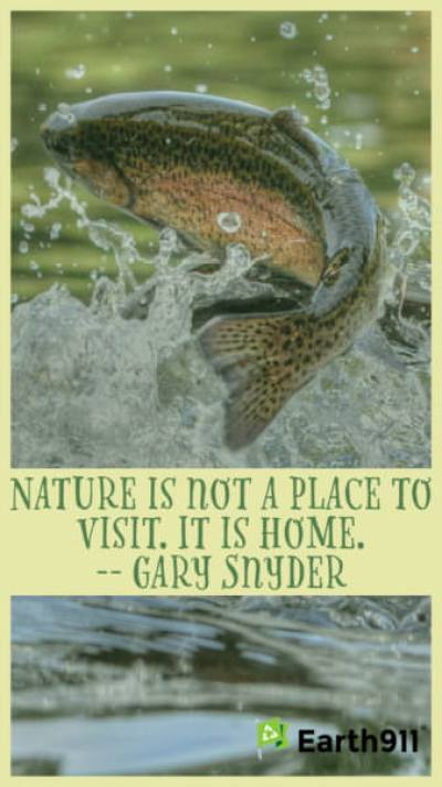 """""""Nature is not a place to visit. It is home."""" --Gary Snyder"""