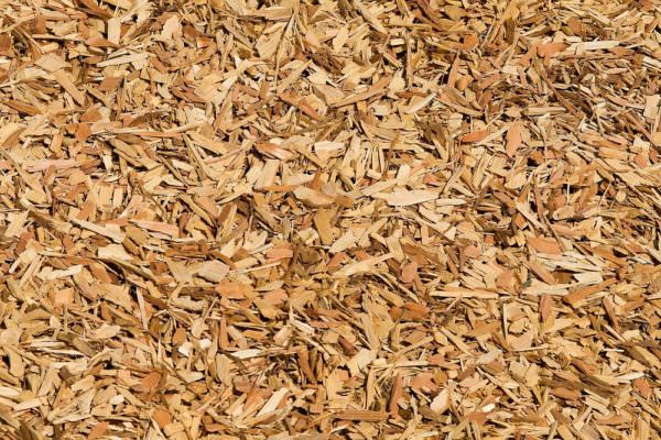 wood chips for mulch