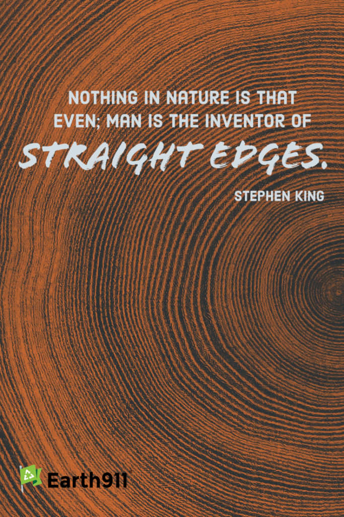 straight edges quote by Stephen King