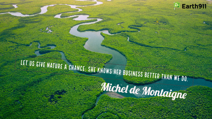 """""""Let us give nature a chance. She knows her business better than we do."""" -- Michel de Montiagne"""