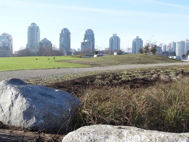 A just-planted-up Trillium Park