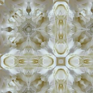 Carnation Cross