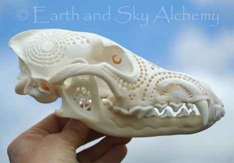 Hand Carved Coyote Skull 12