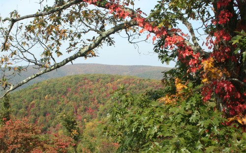 Blue Ridge mountain leaf change