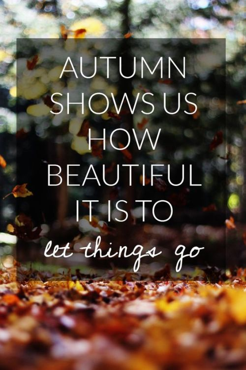 autumn-let-go