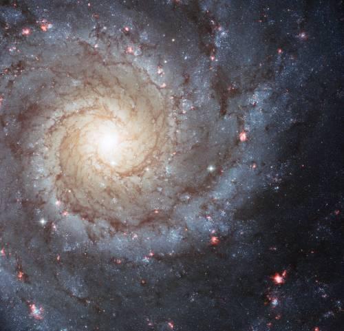 M74 spiral galaxy