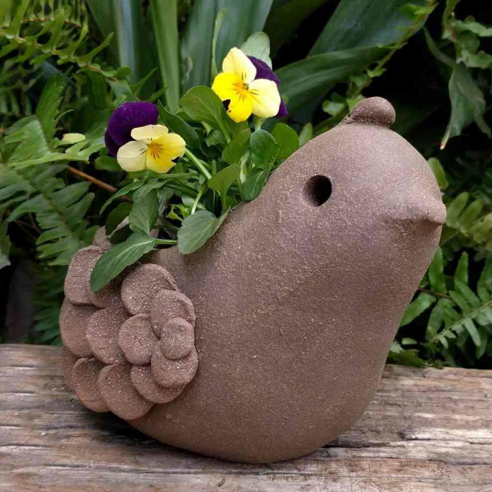 quail_planter_young_small_green_1024_04