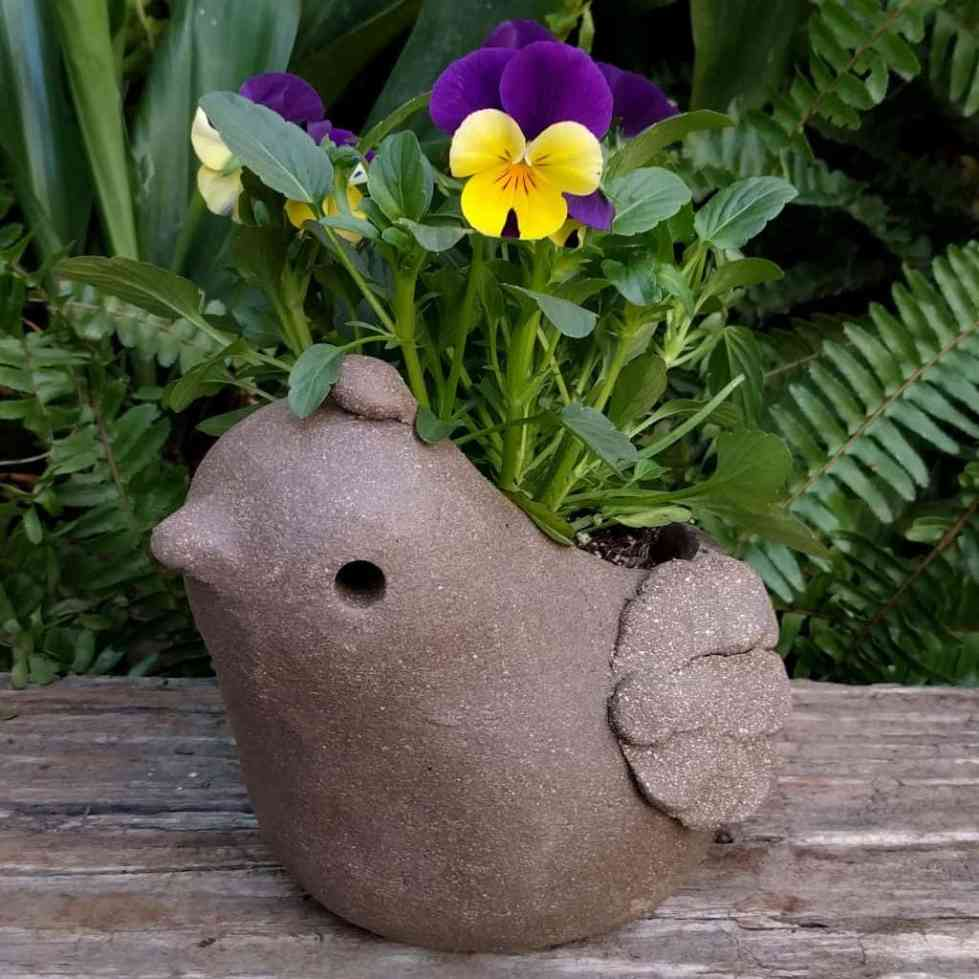 quail_planter_young_small_green_1024_15