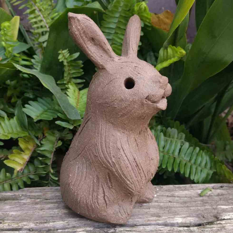 sitting_rabbit_without_ears_up_greenspace_12
