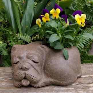 bulldog-planter-sleeping-garden-sculpture-clay-margaret-hudson-earth-arts-1024-16
