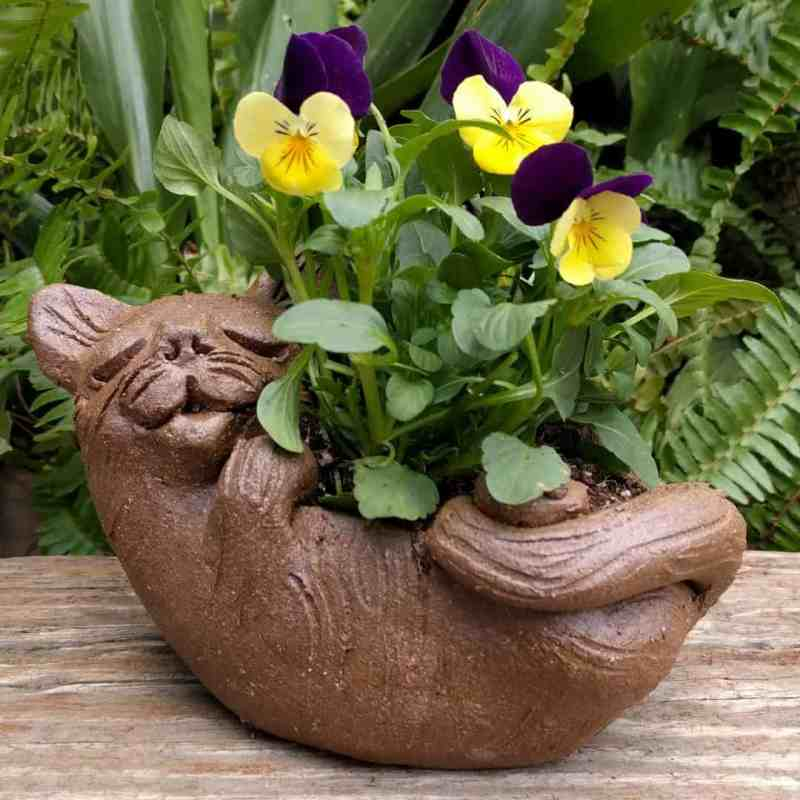 cat_back_planter_flowers_greenspace_4