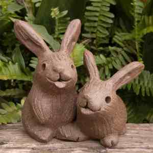 rabbit_pair_outside_3