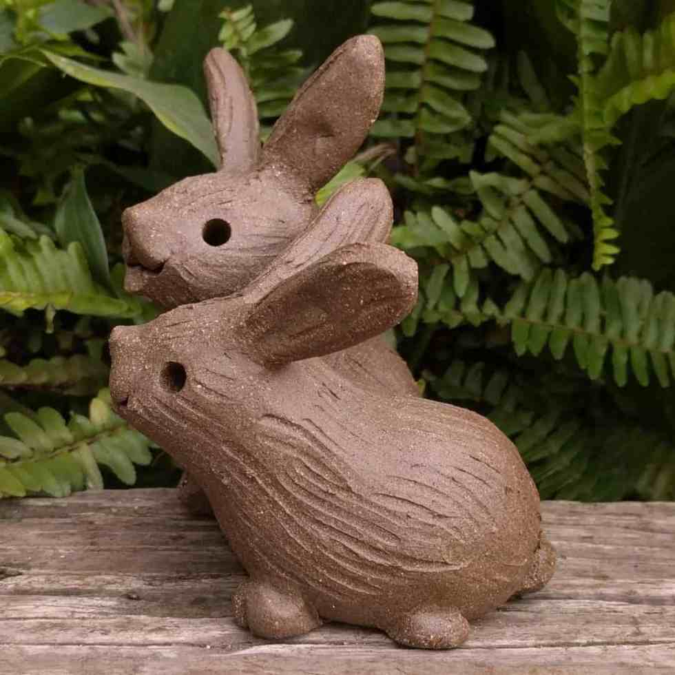 rabbit_pair_outside_5