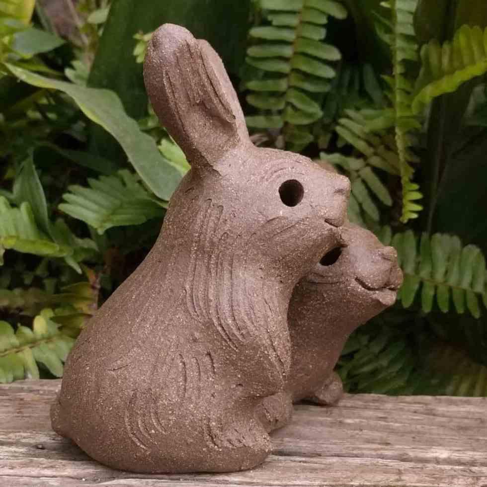 rabbit_pair_outside_9