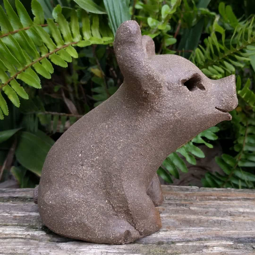 small_pig_outside_11