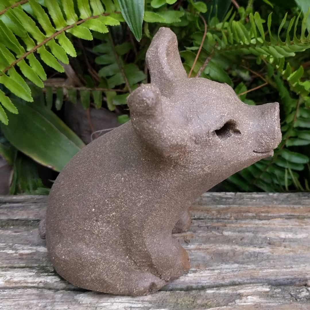 small_pig_outside_12