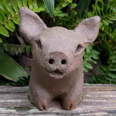 small_pig_outside_16