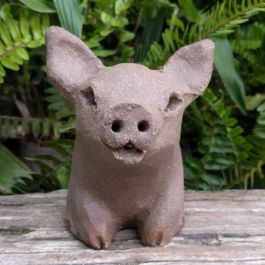 small_pig_outside_2