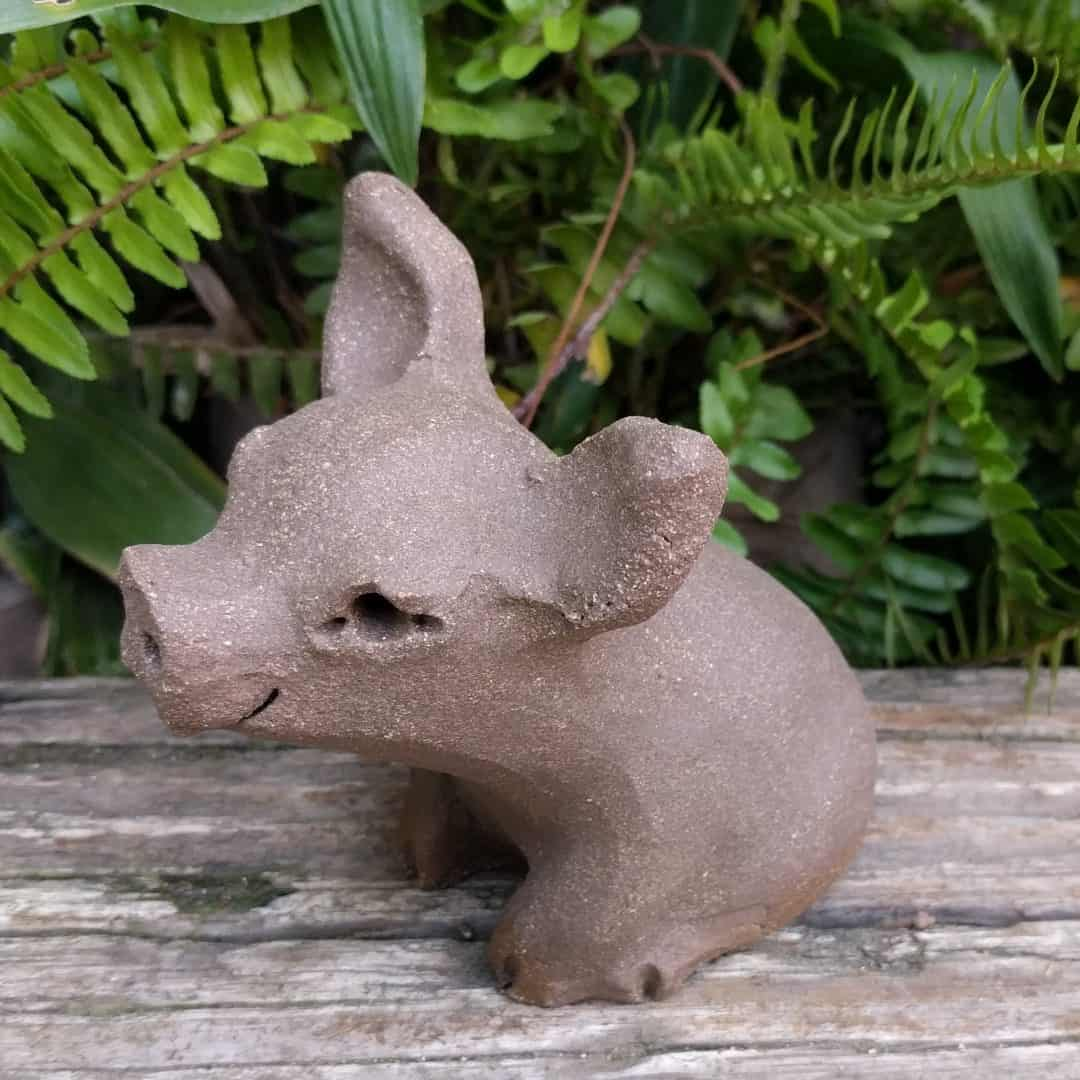 small_pig_outside_3