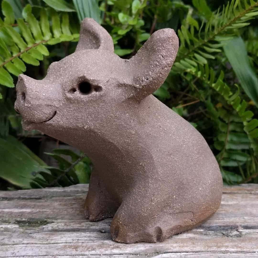 small_pig_outside_4