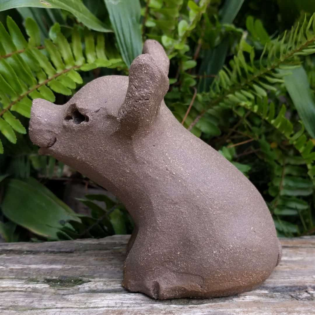 small_pig_outside_5