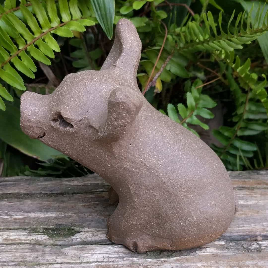 small_pig_outside_6