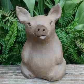 chubby-pig-1