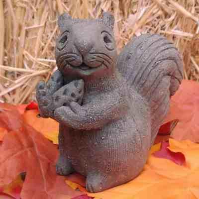 harvest-squirrel-2
