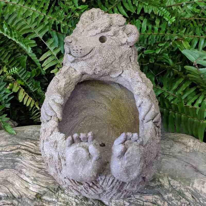 hedgehog-planter-on-back-4