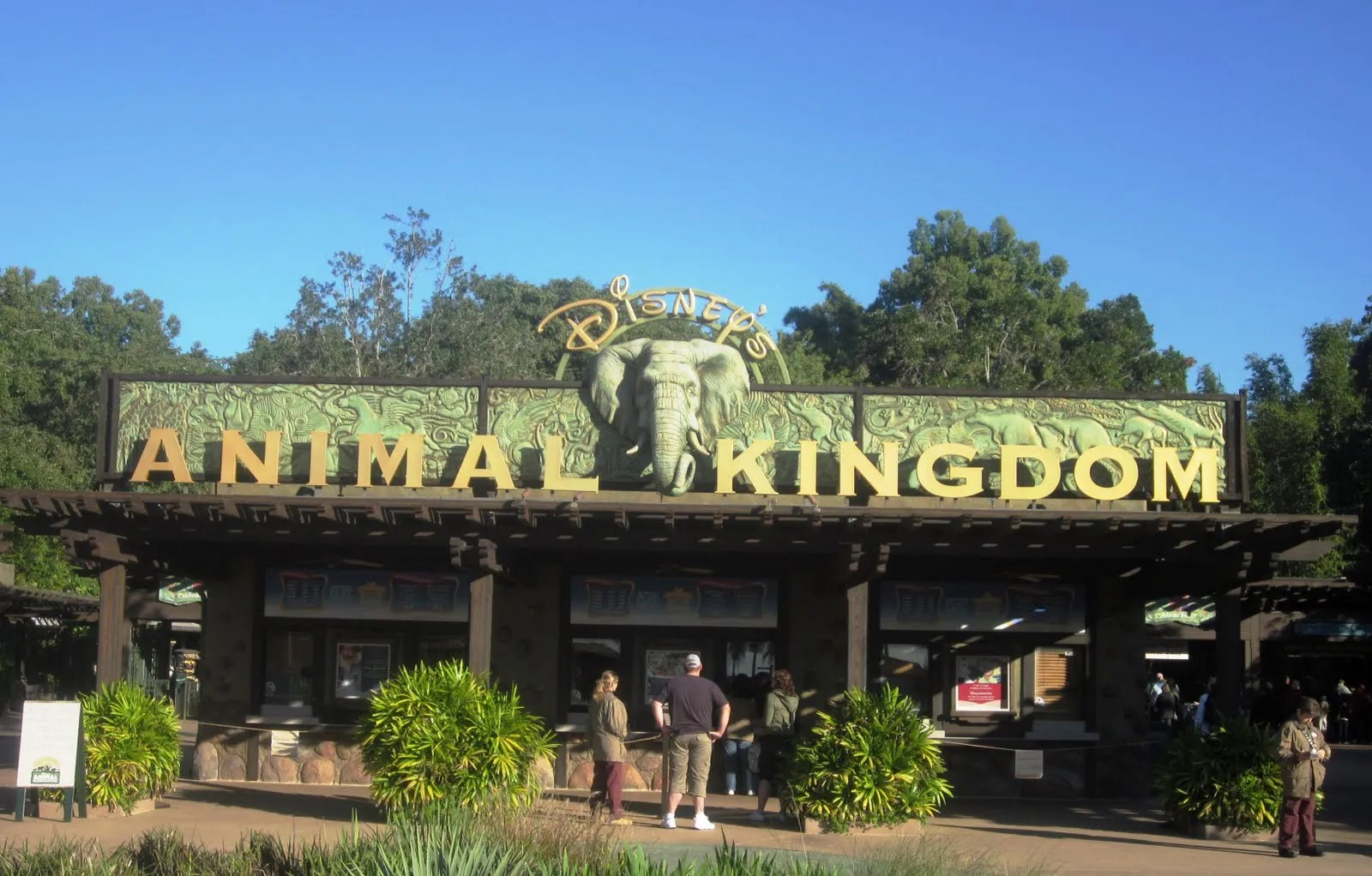 Animal Kingdom 01