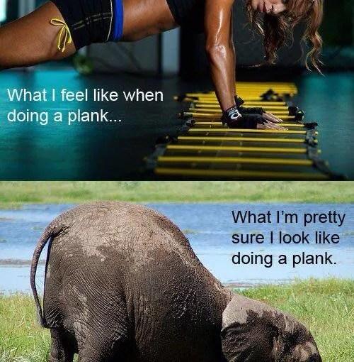 Plank Off
