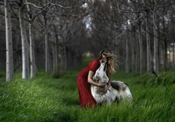 Little-Red-Riding-Hood-Wolf-4