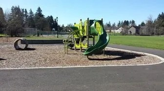 Workout at the Park: schiffler park playground
