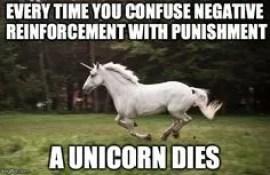 unicorn death