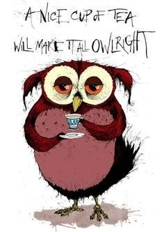 owlright tea